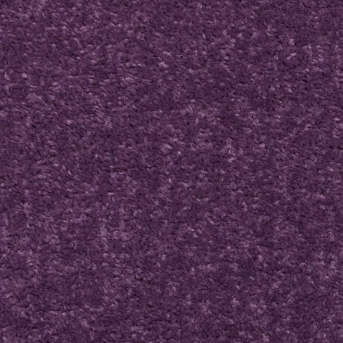 purple carpet. Black Bedroom Furniture Sets. Home Design Ideas