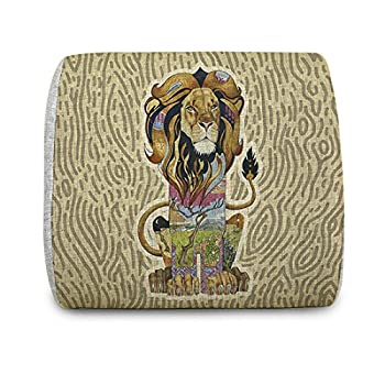EnjoyIt Comfortable Lion Memory Foam Back Cushion for Car Seats, Office Computer Seats,sofa and Other Chairs - Your Best Chioce For Alleviating The Waist Aches and relax Your waist (Especially for Office Worker)