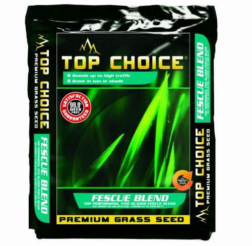Top Choice 17632 Tall Fescue Grass Seed Mixture, 20-Pound