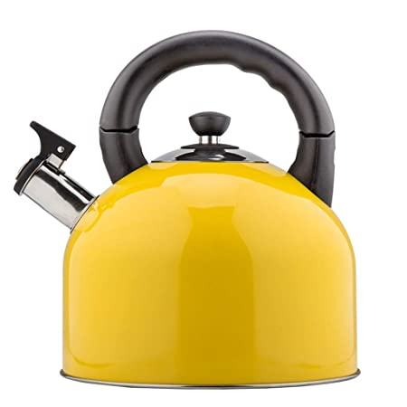 CHNHH Excelente Tetera, Gas Caldera de Acero Inoxidable de ...