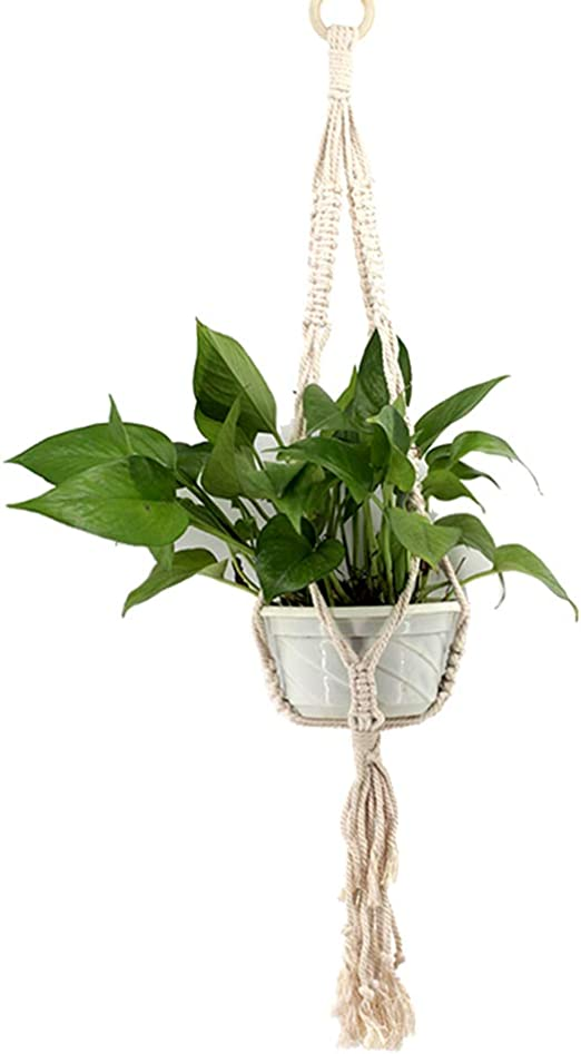 vosarea colgado Jardinera plantar planta bandeja Colgante Arnés ...