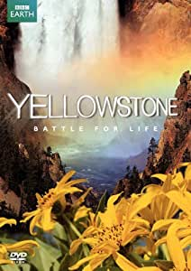 Yellowstone: Battle for Life (SD)