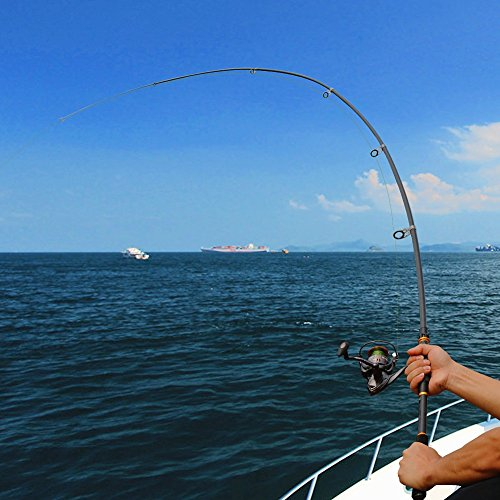 Amazon.com: Sougayilang Mini Spinning Fishing Rod and Reel ...
