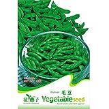 Plentree Fd1290 Edamame Seed Soybean Seed Soy Bean Green Vegetable ~1 Pack 20 Seeds~