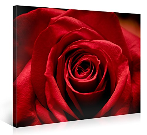 Large Canvas Print Wall Art - STUNNING RED ROSE - 40x30 Inch Flower Canvas Picture Stretched On A Wooden Frame - Giclee Canvas Printing - Hanging Wall Deco Picture / e4695 ()