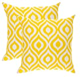 Best Pillow Slipcovers - TreeWool, (2 Pack) Throw Pillow Covers Ikat Ogee Review