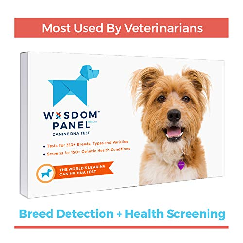 Wisdom Panel Health Canine DNA Test - Dog DNA Test Kit for Breed, Ancestry and Genetic Health Information