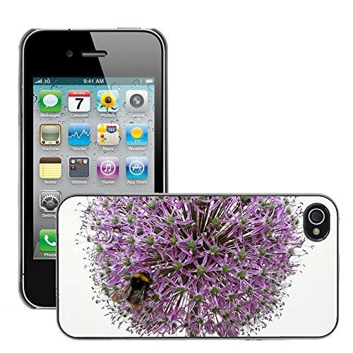 Bild Hart Handy Schwarz Schutz Case Cover Schale Etui // M00135669 Bee Hummel Pflanze Insektenbestäubung // Apple iPhone 4 4S 4G