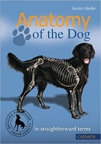 Anatomy of the Dog: In Straightforward Terms: Kerstin Mielke ...