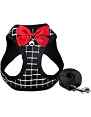 Cat Harness and Leash for Walking Small Cat and Dog Harness, Escape Proof Soft Vest Harnesses with Bell Bow, Easy Control Breathable Pet Safety Jacket & 1 Metal Leash Ring