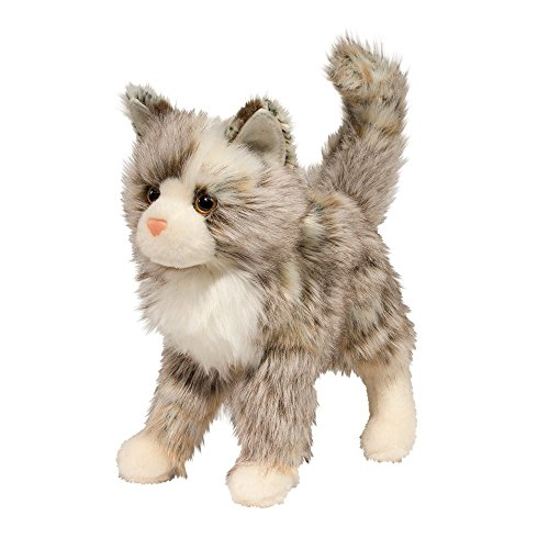 Tan Cat - 1