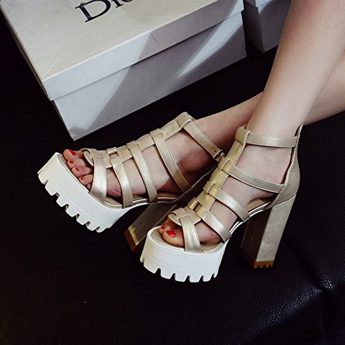 Carolbar Womens Zip Buckle Fashion Party Date Platform Chic Chunky High Heel Dress Sandals Gold DUVBUIT9s
