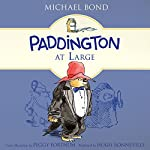 Paddington at Large | Michael Bond