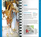 Dr. Kellon's Guide to First Aid for Horses 2nd