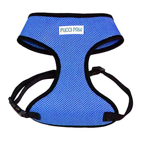 Pucci Paw Dog Harness (Large, Blue)