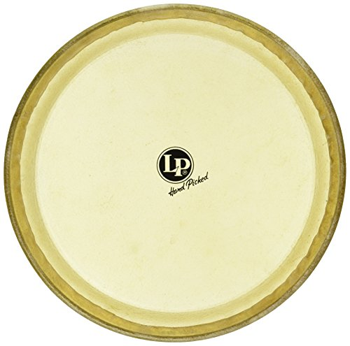 Latin Percussion LP274B Conga (Lp Conga Replacement Head)