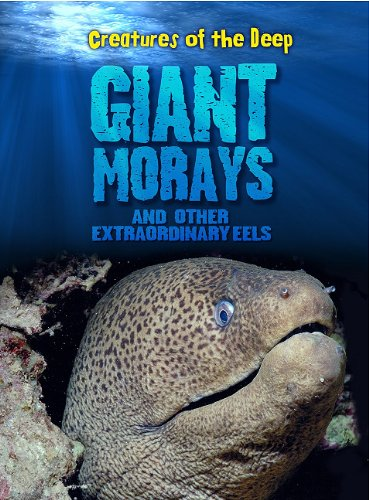 Giant Morays and Other Extraordinary Eels (Creatures of the Deep) ebook