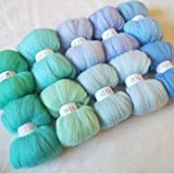 Maslin 10 Colors Wool Fibre Roving Sewing for Needle Felting Doll Needlework Raw Wool Crafts Blue 10g 20g 50g Merino Wool - (Color: 100g 1000g)