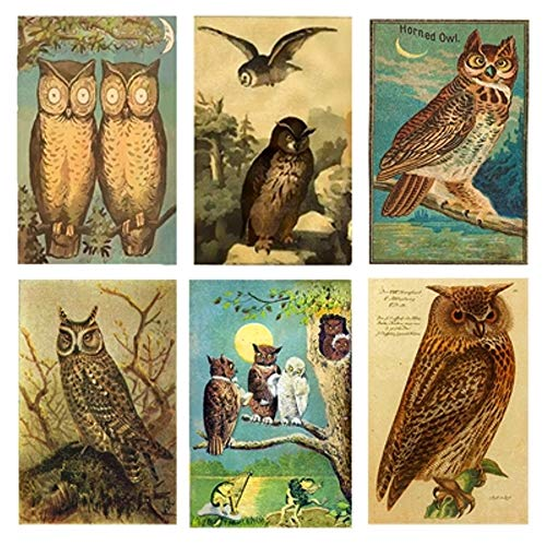 Decorative Set of 6 Owl Mini Matchboxes Candle and Fireplace Wood Matches, 2.188 x 1.5 x .5
