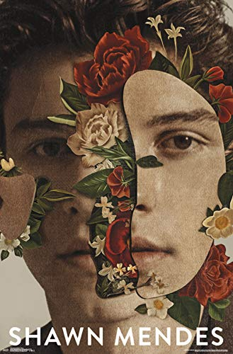 Trends International Shawn Mendes-Floral Mount Bundle Wall Poster, 22.375 x 34, Multi