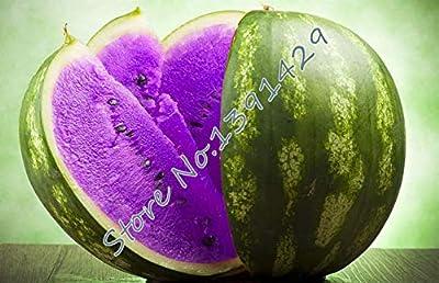 50 pcs Rare Purple Watermelon Seed Fruit Seeds Giant Very Big Watermelon New s f
