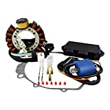 Kit Stator + HP CDI Box + External Ignition Coil + Crankcase Cover Gasket For Yamaha YFM 350 Warrior 1997-2001