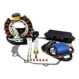 Rmstator Kit Stator + HP CDI Box + External Ignition Coil...