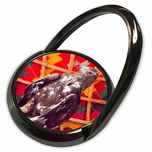 3dRose Danita Delimont - Mongolia - Western Mongolia, Bayan Olgii, Gashuun Suhayt. Mongolian Golden eagle. - Phone Ring (Mongolian Eagle)