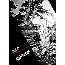 Basilicata: La Lucania: terra dei boschi bruciati (guida narrata coi luoghi e il resto) (Contro Cultura) (Italian Edition)