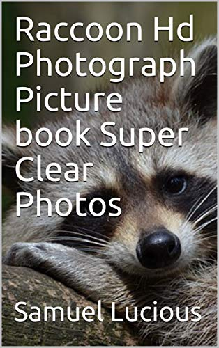 Raccoon Hd Photograph Picture book Super Clear Photos