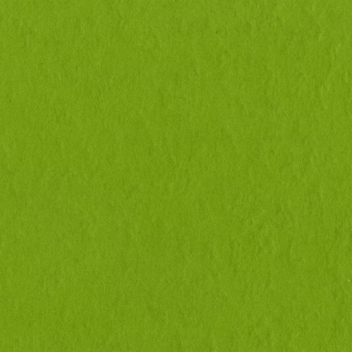Bazzill Basics Paper T19-5381 Prismatic Cardstock, 25 Sheets, 12 by 12-Inch, Intense Kiwi -