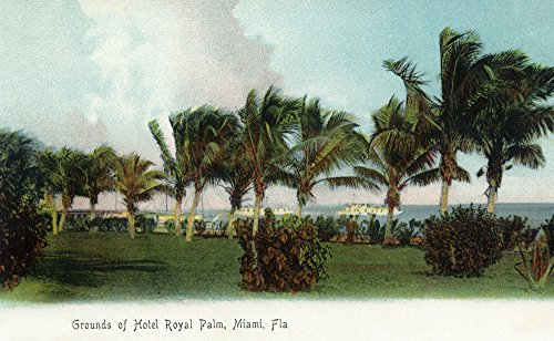 Miami, Florida - Hotel Royal Palm Grounds Scene (24x36 SIGNED Print Master Giclee Print w/Certificate of Authenticity - Wall Decor Travel Poster)