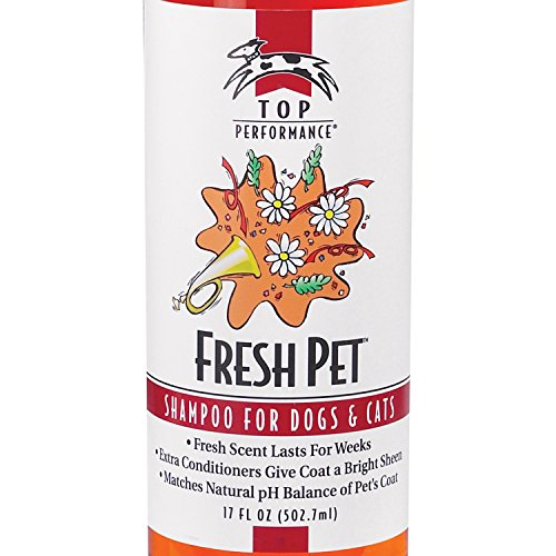Buy smelling dog shampoo and conditioner