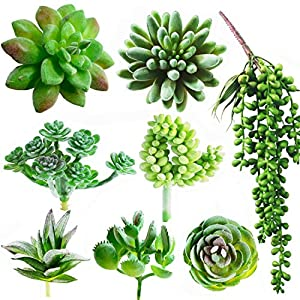 Dandevo 8 Pcs Unpotted Fake Succulent Plants Assorted Realistic Artificial Faux Plastic Silk Greenery Stems in Bulk String of Pearls Hanging Plant for Terrarium Home Wall Decor Large and Small 69