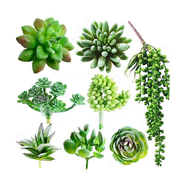 Dandevo-8-Pcs-Unpotted-Fake-Succulent-Plants-Assorted-Realistic-Artificial-Faux-Plastic-Silk-Greenery-Stems-in-Bulk-String-of-Pearls-Hanging-Plant-for-Terrarium-Home-Wall-Decor-Large-and-Small