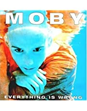 Everything Is Wrong [Vinilo]