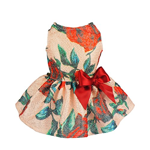 Fitwarm Elegant Floral Ribbon Clothes