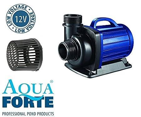 Aquaforte Dm Lv 12 Volt Schwimmteich Pumpe Koi Teichpumpe Amazon