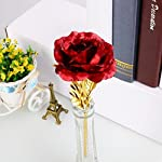 JaipurCrafts-Webelkart-24K-Red-Gold-Rose-10-Inches-With-Gift-Box-Best-Gift-For-Loves-Ones-ValentineS-Day-MotherS-Day-Anniversary-Birthday