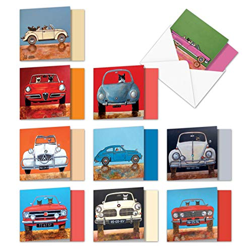 Assorted Boxed of 10 Blank Note Cards Car Cats 4 x 5.12 inch w/ Envelopes - Animal Cards; Funny Cats Driving Colored Cars - Assortment Box of Cute Cat All Occasion Notecards - MQ4978OCB-B1x10