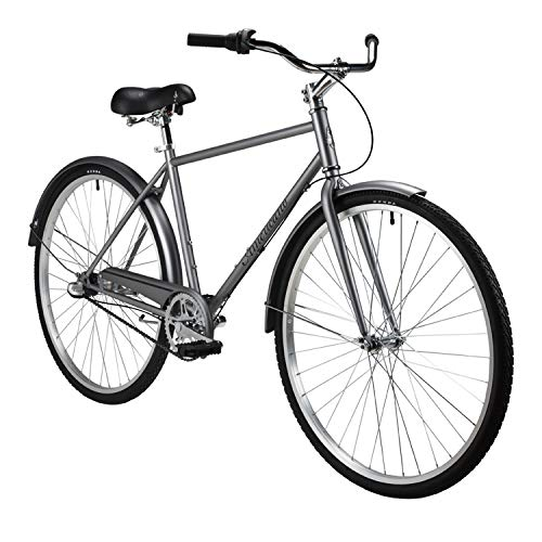 Americano Performance Coaster 3-Speed Bike Medium Grey For Sale