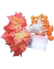 Kerstlichten Christmas Decor Thanksgiving Led Pumpkin Maple Leaf Lantern String (Orange)