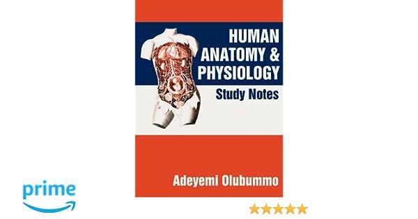 Amazon.com: Human Anatomy and Physiology: Study Notes (9781450235525 ...