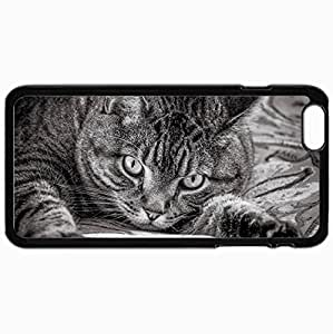 Personalized Protective Hardshell Back Hardcover For iPhone 6 Plus, Cat Design In Black Case Color