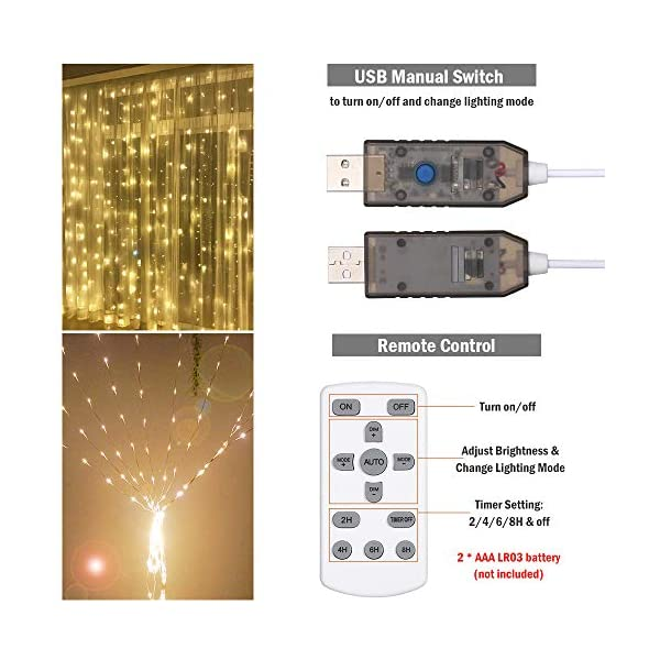 Tomshine Tenda Luci LED 3 x 3 meters, 300 LEDs con Luci Natale Tenda, IP65, 8 Programmi di Luce,Tenda di Luci per Natale, Decorazione Feste, Interni (Bianco Caldo) 4 spesavip