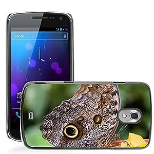 Super Stella Slim PC Hard Case Cover Skin Armor Shell Protection // M00105766 Butterfly Eyes Exotic Tropics // Samsung Galaxy Nexus GT-i9250 i9250