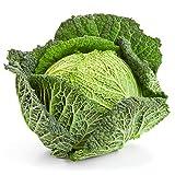 Savoy Cabbage Seeds, 500+ Premium Heirloom Seeds, Best Cabbage for Cooking! Popular!, (Isla's Garden Seeds), Non GMO Organic, 85% Germination Rates, Highest Quality Seeds