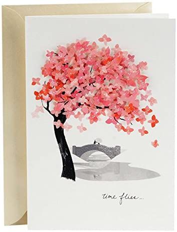 Hallmark Signature Love Card, Time Flies (Romantic Anniversary Card or Birthday Card)