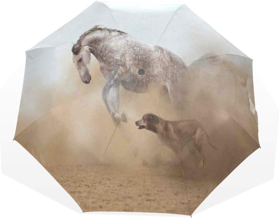 LASINSU Paraguas Resistente a la Intemperie,protección UV,Caballo lusitano Jugando con un Perro Tormenta de Arena Salvaje Rápido Compañero Amistad