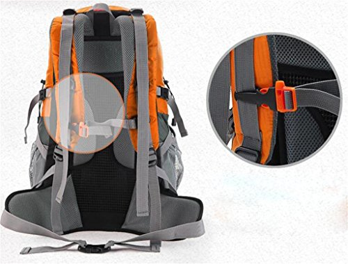 mochilas montaña Hombres bolsos al aire libre del alpinismo de los modelos femeninos de viaje bolsa de deporte mochila de camping 40L Mochilas de marcha ( Color : Negro , Tamaño : 40L ) Negro